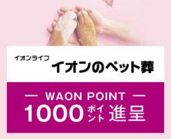 WAON POINT1,000ポイントを進呈