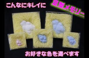 足型メモリー 2,800円~