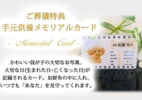 葬儀特典③ メモリアルカード
