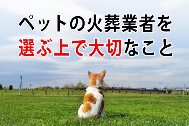 【重要】ペットの火葬業者を選ぶ上で大切なこと