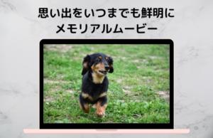 メモリアルムービー<br>¥30,000