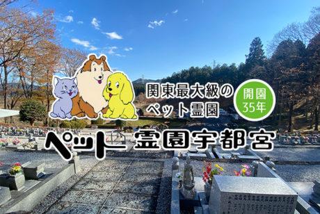 関東最大級のペット霊園!【ペット霊園宇都宮訪問レポート】
