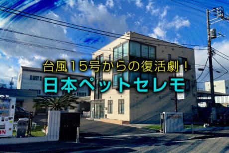 台風15号で大破したペット霊園の復活ストーリー【日本ペットセレモ訪問レポート】