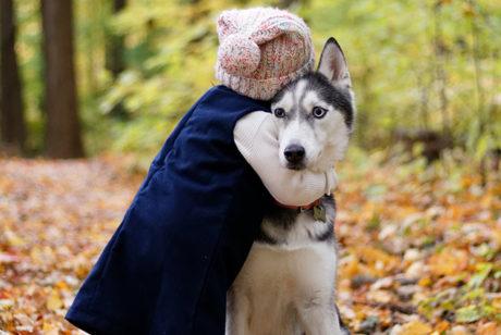 子供が生まれたら犬を飼いなさい。【イギリスの有名な詩(ことわざ)】